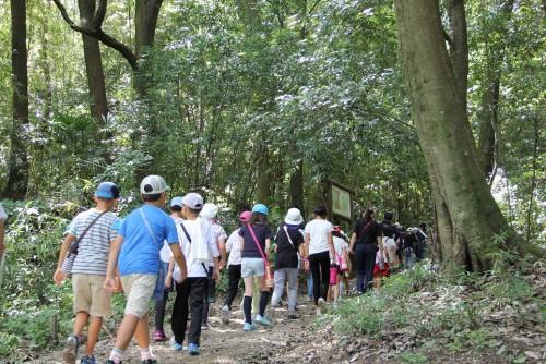 【第2日目/畝傍登山】毎年恒例の畝傍山への登山。道中は木々が直射日光を遮ってくれ、意外と涼しく感じました。